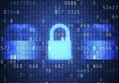 El Consejo Nacional de Ciberseguridad.